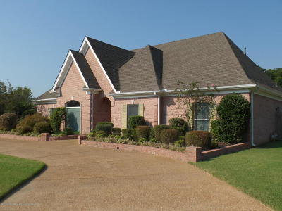 Desoto County Single Family Home For Sale: 6345 Acree Woods Drive