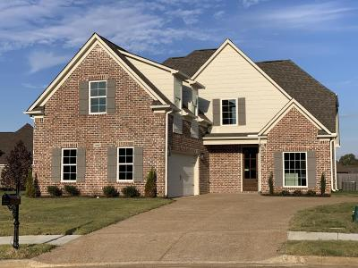 Desoto County Single Family Home For Sale: 1963 Enclave Cove
