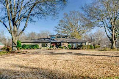 Olive Branch Single Family Home For Sale: 4905 Cherry Tree Drive