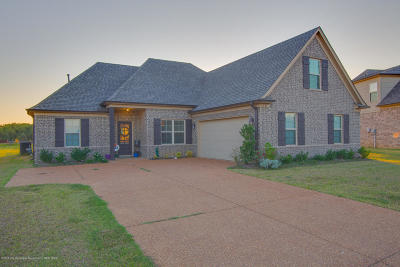 Desoto County Single Family Home For Sale: 3345 Hill Valley Lane