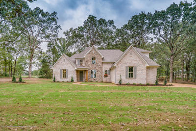Desoto County Single Family Home For Sale: 7432 Vaiden Road