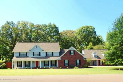 Lake Cormorant MS Single Family Home For Sale: $375,000