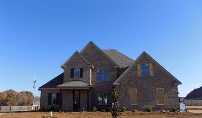 Southaven Single Family Home For Sale: 3704 Beech Tree Cove