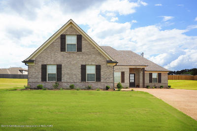 Southaven Single Family Home For Sale: 3483 Marion Lane