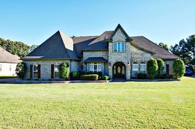 Desoto County Single Family Home For Sale: 3119 Bridgemoore