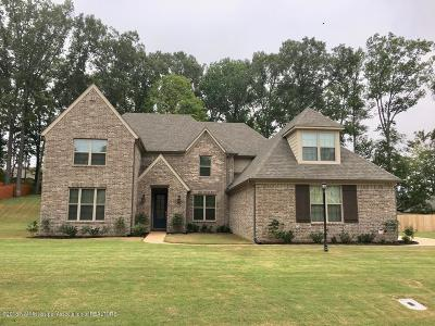 Olive Branch Single Family Home For Sale: 7333 Old South Drive