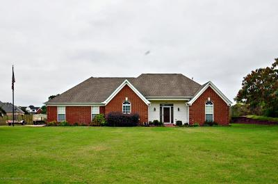 Southaven Single Family Home For Sale: 3613 Belle Pointe Drive