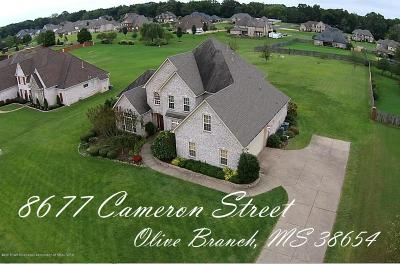 Olive Branch Single Family Home For Sale: 8677 Cameron Street
