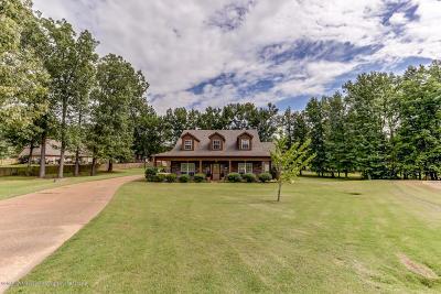 Desoto County Single Family Home For Sale: 3848 River Pointe Cove