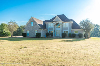 Desoto County Single Family Home For Sale: 4620 Thompson Lane