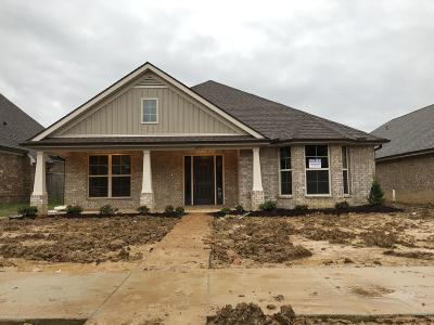 Olive Branch Single Family Home For Sale: 6757 Jessie Hoyt Drive