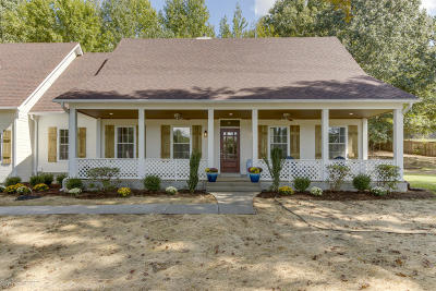 Olive Branch Single Family Home For Sale: 9401 Austin Drive