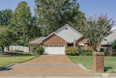 Southaven Single Family Home For Sale: 8745 E Carriage Drive