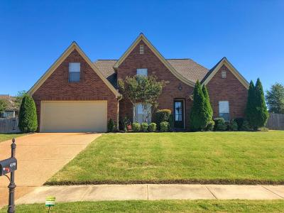 Olive Branch Single Family Home For Sale: 4190 Sidlehill Drive