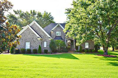 Desoto County Single Family Home For Sale: 3169 Bridgemoore Drive