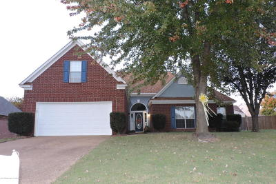 Olive Branch Single Family Home For Sale: 9644 N Meade Circle