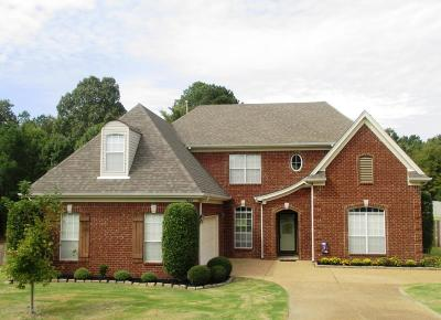 Olive Branch Single Family Home For Sale: 9824 Dorothy Drive