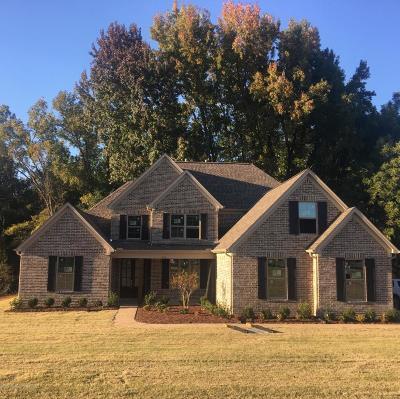 Hernando Single Family Home For Sale: 746 Vinson Road