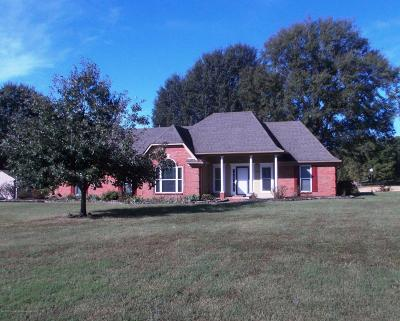 Southaven Single Family Home For Sale: 4087 Jessica Drive