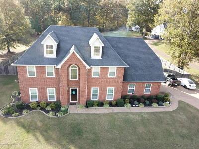 Southaven Single Family Home For Sale: 3675 Swinnea Road