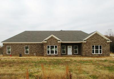 Marshall County Single Family Home For Sale: 745 Moore Loop Cove