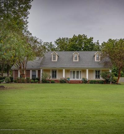 Olive Branch Single Family Home For Sale: 4021 Summers Place Drive