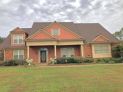 Olive Branch Single Family Home For Sale: 4779 Nance Place
