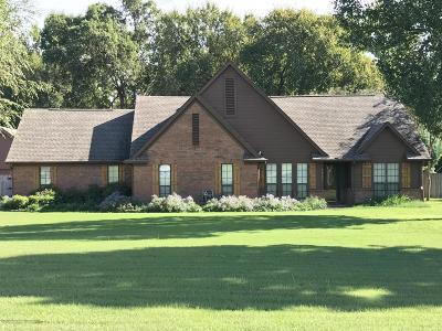 Southaven Single Family Home For Sale: 4622 Jacob Lane
