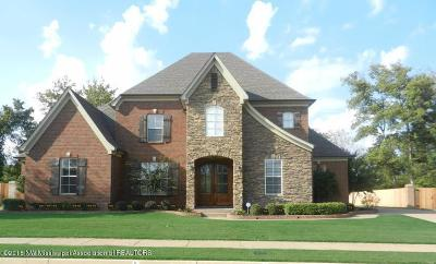 Olive Branch Single Family Home For Sale: 4066 Kayley Lane