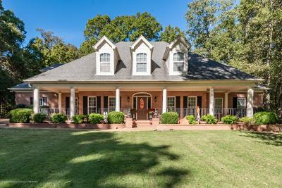 Desoto County Single Family Home For Sale: 1480 Flint Lock Drive
