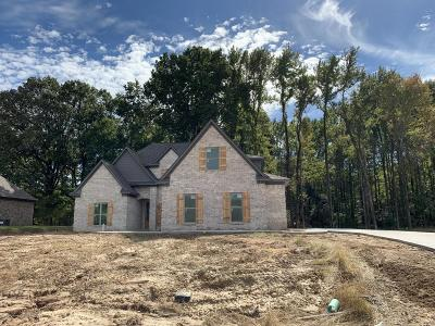 Southaven Single Family Home For Sale: 3665 Bailey Lane