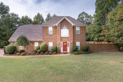 Nesbit MS Single Family Home For Sale: $225,000