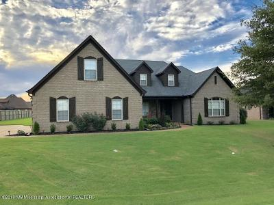 Olive Branch Single Family Home For Sale: 8125 Falcon Drive