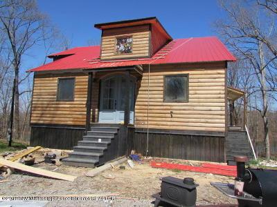 Hernando Single Family Home For Sale: 11376 Mingo Drive