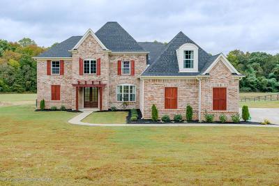 Desoto County Single Family Home For Sale: 4090 Fogg Road