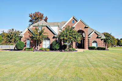 Olive Branch MS Single Family Home For Sale: $329,900