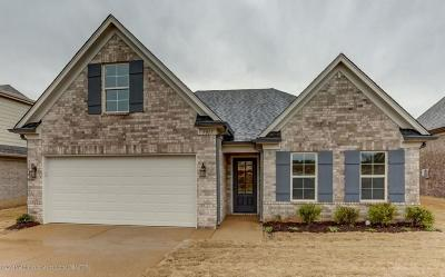 Southaven Single Family Home For Sale: 7968 Hemlock Drive