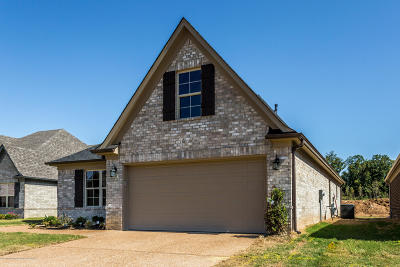 Southaven Single Family Home For Sale: 7980 Hemlock Drive
