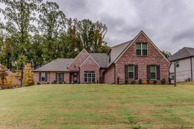 Desoto County Single Family Home For Sale: 4884 Antebellum Lane