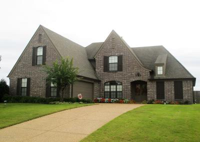 Desoto County Single Family Home For Sale: 9239 N Mitchells Corner Road