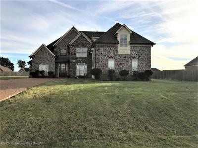 Desoto County Single Family Home For Sale: 4825 Deer Run Road