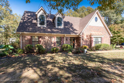 Desoto County Single Family Home For Sale: 6120 Spring Creek Drive