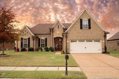 Olive Branch Single Family Home For Sale: 7157 Reliance Lane
