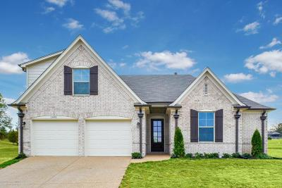 Olive Branch MS Single Family Home For Sale: $251,900