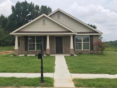 Southaven MS Single Family Home For Sale: $155,200