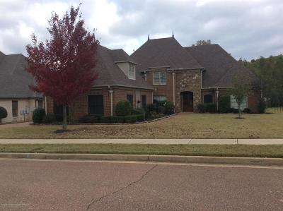 Olive Branch MS Single Family Home For Sale: $399,900
