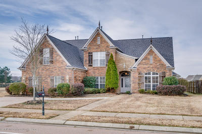 Olive Branch Single Family Home For Sale: 7061 Reliance Lane