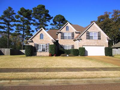 Olive Branch Single Family Home For Sale: 10598 Parker Cove