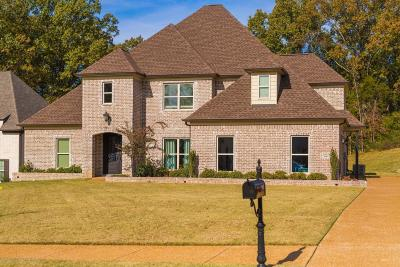 Hernando Single Family Home For Sale: 660 Shady Brooke Lane
