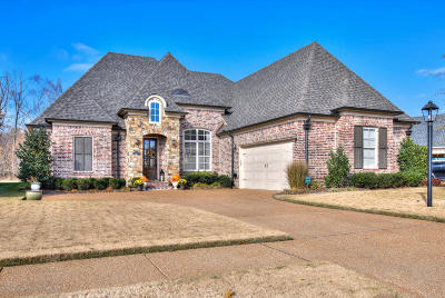 Olive Branch Single Family Home Active/Contingent: 4411 E Robinson Loop